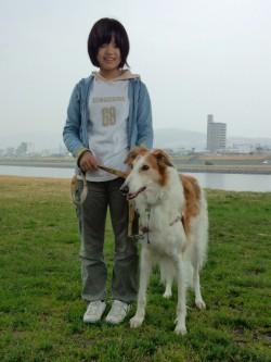 犬,しつけ,広島,出張,トレーニング