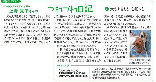 中国新聞折り込みのミニ新聞「Cue」のコラム欄へ8月4回連続で掲載をして頂きました。