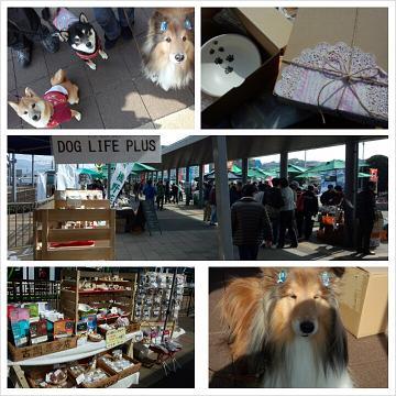 ひろしまみなとマルシェにて、犬とオーナーのためのお店「DOG LIFE PLUS」