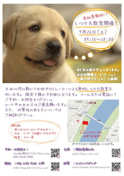 広島市西区で毎月1回無料しつけ方教室開催中です。